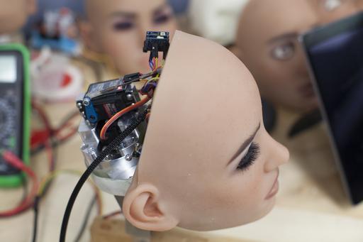 Sub.doc: Seksirobottien vallankumous