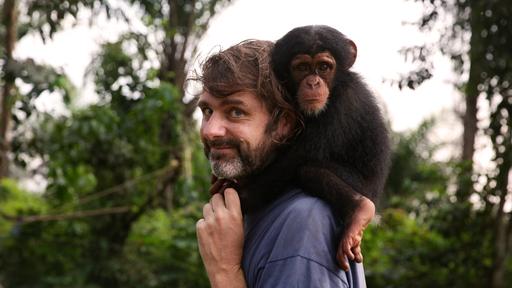 Turvapaikka simpansseille