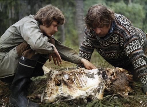 Kino Suomi: Lampaansyöjät