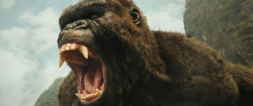 Subleffa: Kong: Pääkallosaari